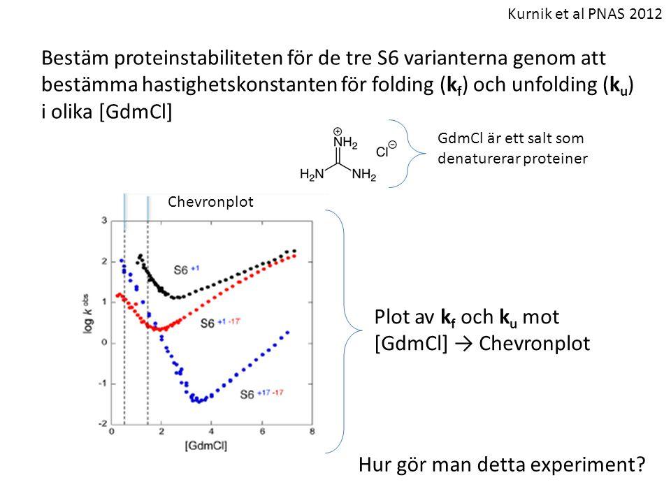 Plot av kf och ku mot [GdmCl] → Chevronplot